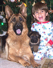 Janara and Amigo (in the middle) with son Aidan - Christmas 2004