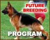 Our Future Breeding Program