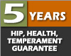 Five Years hip, genetics, health and temperament guarantee
