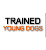 Trained dogs for sale